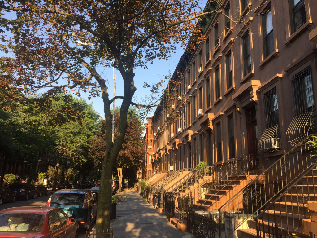 280 St Marks Ave BKLYN - Neighborhood